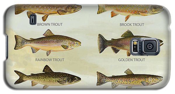 Trout Species Galaxy S5 Case by Aged Pixel