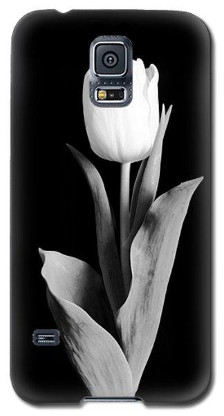 Tulip Galaxy S5 Case by Sebastian Musial