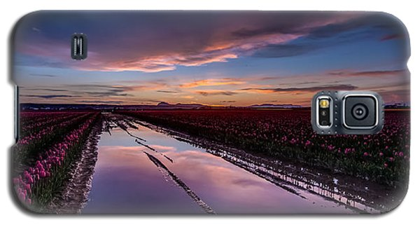 Tulips And Purple Skies Galaxy S5 Case by Mike Reid