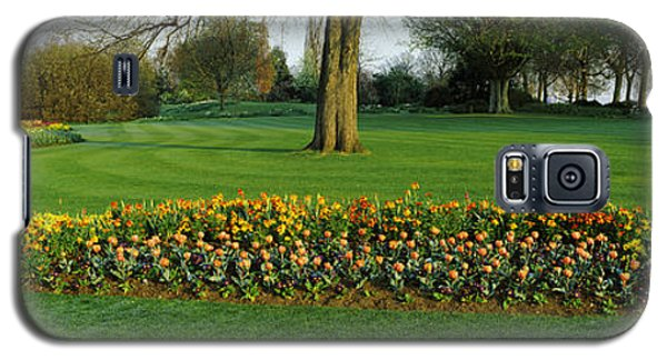 Tulips In Hyde Park, City Galaxy S5 Case by Panoramic Images