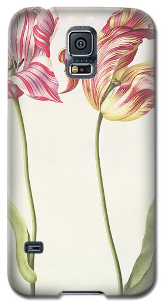 Tulips Galaxy S5 Case by Nicolas Robert
