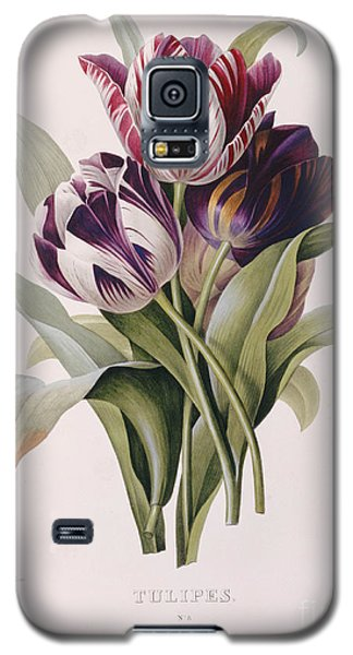 Tulips Galaxy S5 Case by Pierre Joseph Redoute