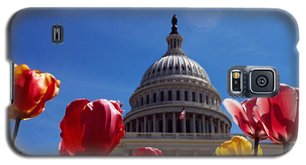 Tulips With A Government Building Galaxy S5 Case by Panoramic Images
