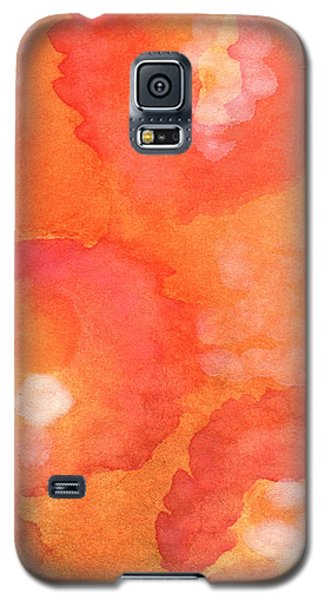 Floral Galaxy S5 Cases - Tuscan Roses Galaxy S5 Case by Linda Woods