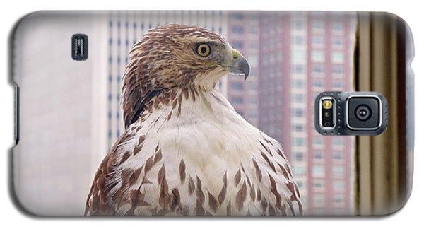 Urban Red-tailed Hawk Galaxy S5 Case by Rona Black