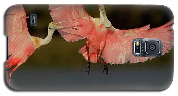 Usa, Florida, Tampa Bay, Alafaya Banks Galaxy S5 Case by Jaynes Gallery