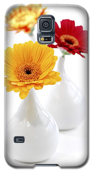 Flower Galaxy S5 Cases - Vases with Gerbera flowers Galaxy S5 Case by Elena Elisseeva