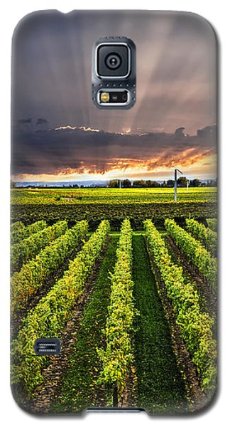Vineyard At Sunset Galaxy S5 Case by Elena Elisseeva