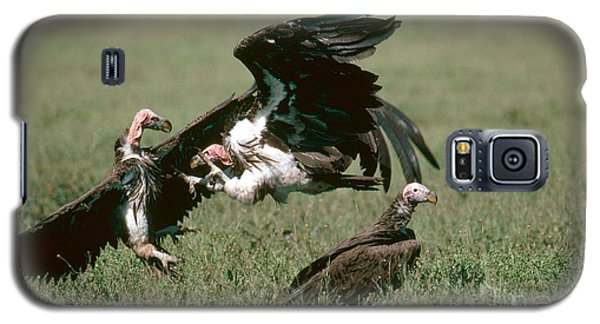 Vulture Fight Galaxy S5 Case by Gregory G. Dimijian, M.D.