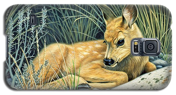 Waiting For Mom-mule Deer Fawn Galaxy S5 Case by Paul Krapf