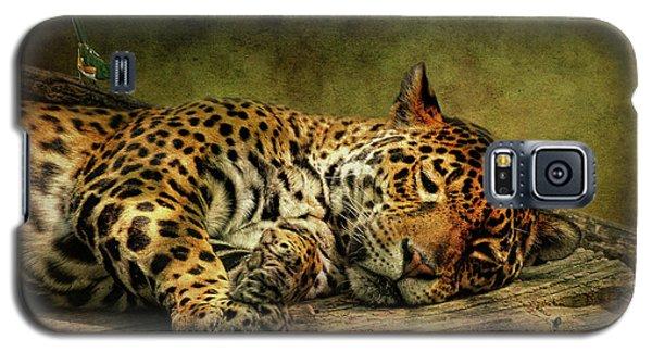 Wake Up Sleepyhead Galaxy S5 Case by Lois Bryan