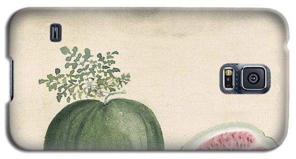 Watermelon Galaxy S5 Case by Aged Pixel