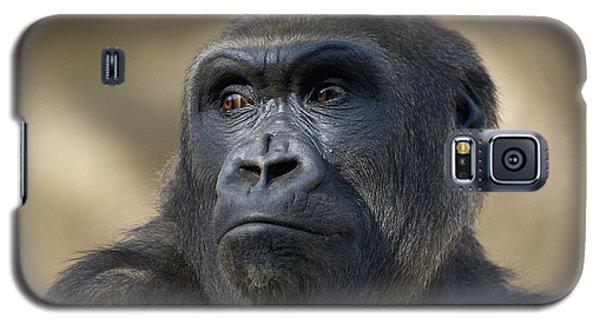 Western Lowland Gorilla Portrait Galaxy S5 Case by San Diego Zoo