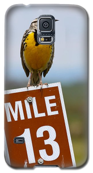 Western Meadowlark On The Mile 13 Sign Galaxy S5 Case by Karon Melillo DeVega