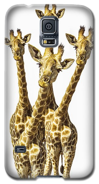 What Are You Looking At? Galaxy S5 Case by Diane Diederich