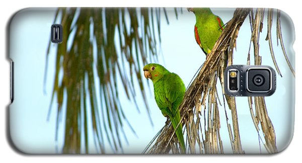 White-eyed Parakeets, Brazil Galaxy S5 Case by Gregory G. Dimijian, M.D.