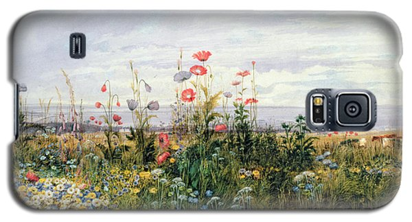 Wildflowers With A View Of Dublin Dunleary Galaxy S5 Case by A Nicholl
