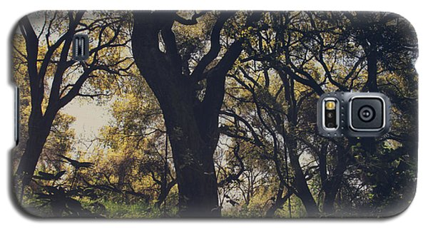 Tree Galaxy S5 Cases - Wildly and Desperately My Arms Reached Out to You Galaxy S5 Case by Laurie Search