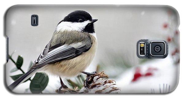 Winter Chickadee Galaxy S5 Case by Christina Rollo