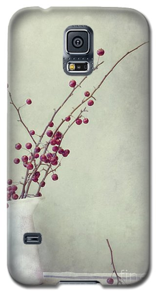 Still Life Galaxy S5 Cases - Winter Still Life Galaxy S5 Case by Priska Wettstein