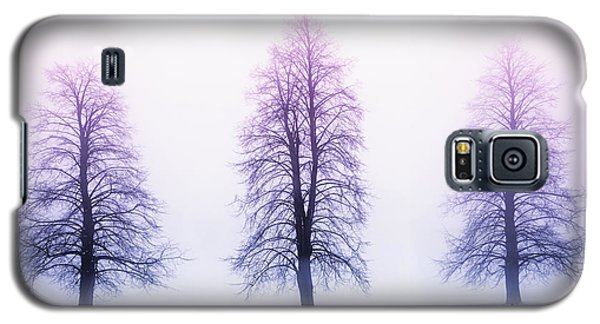 Tree Galaxy S5 Cases - Winter trees in fog at sunrise Galaxy S5 Case by Elena Elisseeva