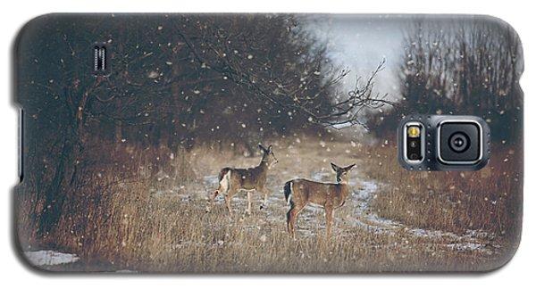 Winter Wonders Galaxy S5 Case by Carrie Ann Grippo-Pike