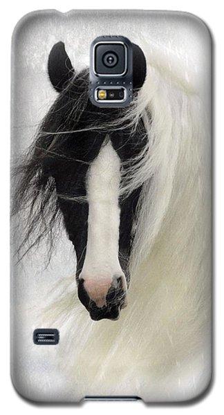 Wisteria  Galaxy S5 Case by Fran J Scott