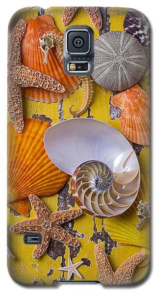 Wonderful Sea Life Galaxy S5 Case by Garry Gay
