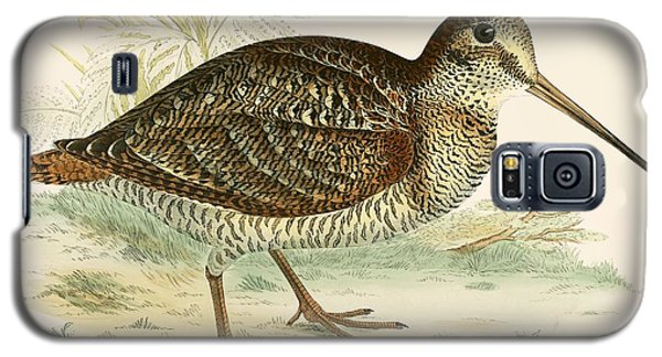 Woodcock Galaxy S5 Case by Beverley R Morris
