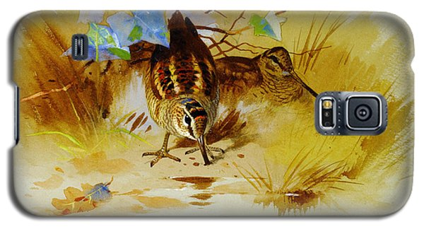 Woodcock In A Sandy Hollow Galaxy S5 Case by Celestial Images