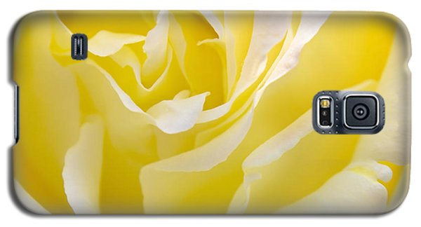 Floral Galaxy S5 Cases - Yellow Rose Galaxy S5 Case by Svetlana Sewell