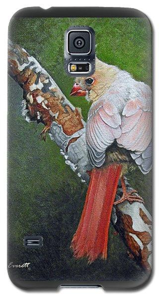 Young Cardinal  Galaxy S5 Case by Ken Everett