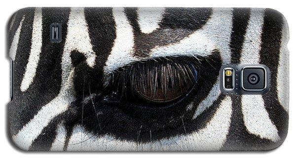 Galaxy S5 Cases - Zebra Eye Galaxy S5 Case by Linda Sannuti
