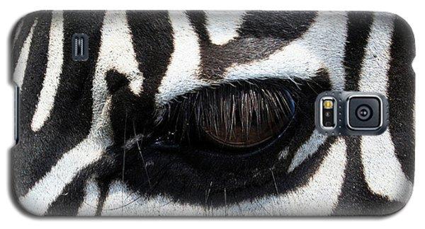 Buy Galaxy S5 Cases - Zebra Eye Galaxy S5 Case by Linda Sannuti