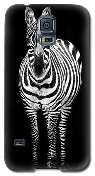 Zebra Galaxy S5 Case by Paul Neville