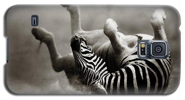 Zebra Rolling Galaxy S5 Case by Johan Swanepoel