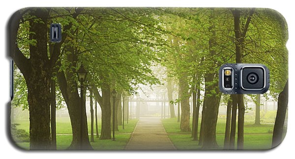Green Galaxy S5 Cases - Foggy park Galaxy S5 Case by Elena Elisseeva