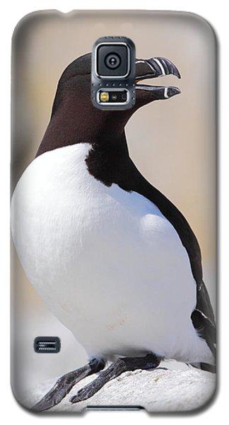 Razorbill Galaxy S5 Case by Bruce J Robinson