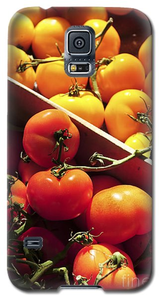 Tomatoes On The Market Galaxy S5 Case by Elena Elisseeva