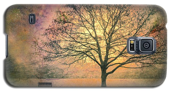 Tree Galaxy S5 Cases - And the Morning is Perfect in all Her Measured Wrinkles Galaxy S5 Case by Tara Turner