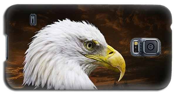 Galaxy S5 Cases - Bald Eagle - Freedom and Hope - Artist Cris Hayes Galaxy S5 Case by Cris Hayes