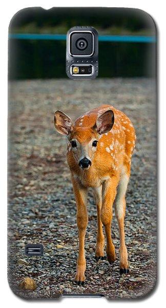 Bambi Galaxy S5 Case by Sebastian Musial