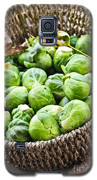 Basket Of Brussels Sprouts Galaxy S5 Case by Elena Elisseeva