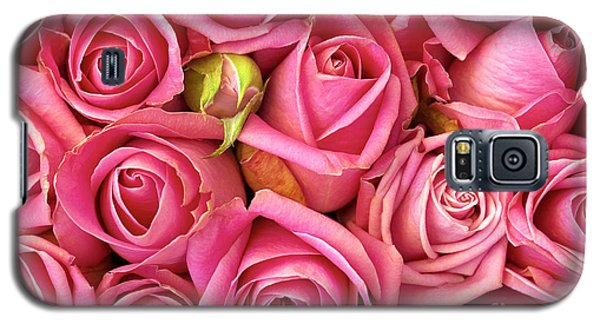 Floral Galaxy S5 Cases - Bed Of Roses Galaxy S5 Case by Carlos Caetano