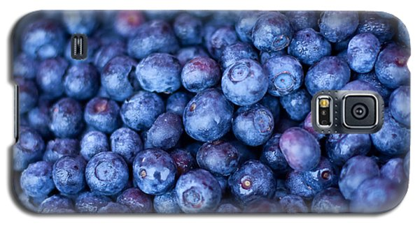 Blueberries Galaxy S5 Case by Tanya Harrison