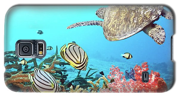 Animals Galaxy S5 Cases - Butterflyfishes and turtle Galaxy S5 Case by MotHaiBaPhoto Prints