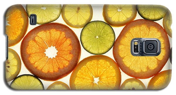 Citrus Slices Galaxy S5 Case by Photo Researchers