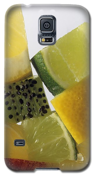 Fruit Squares Galaxy S5 Case by Veronique Leplat