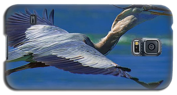 Gliding Great Blue Heron Galaxy S5 Case by Sebastian Musial