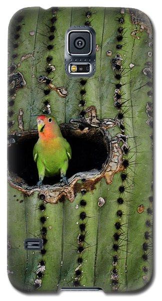 Home Sweet Home  Galaxy S5 Case by Saija  Lehtonen